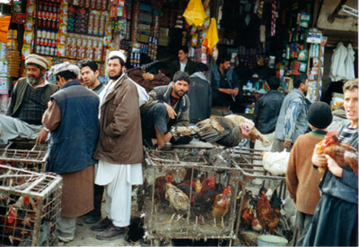 Kabul116
