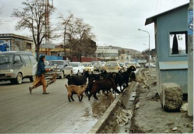 Kabul87