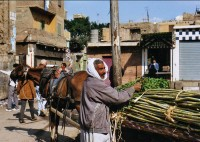Kairo Basar 08
